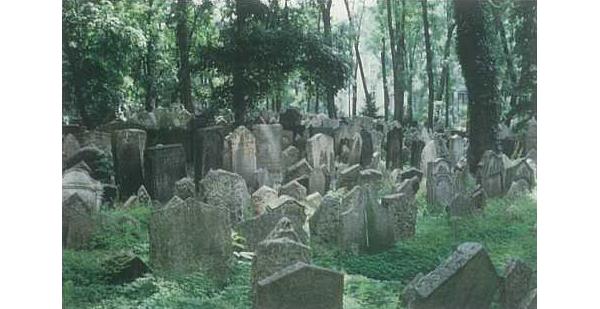 Oude joodse begraafplaats te Praag