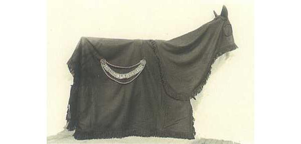 Paardenkleed, bestaande uit een achterkleed en een manenkap